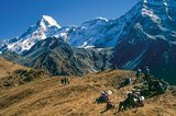 Cicerone - Trekking in the Himalaya_